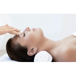 TheraVine™ Appetizer Facial - 30min